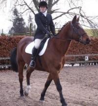 Lady riding a chestnut horse