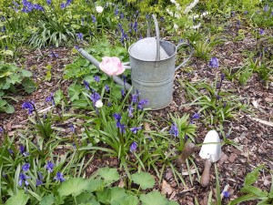 gardening shot of watering can and flower border